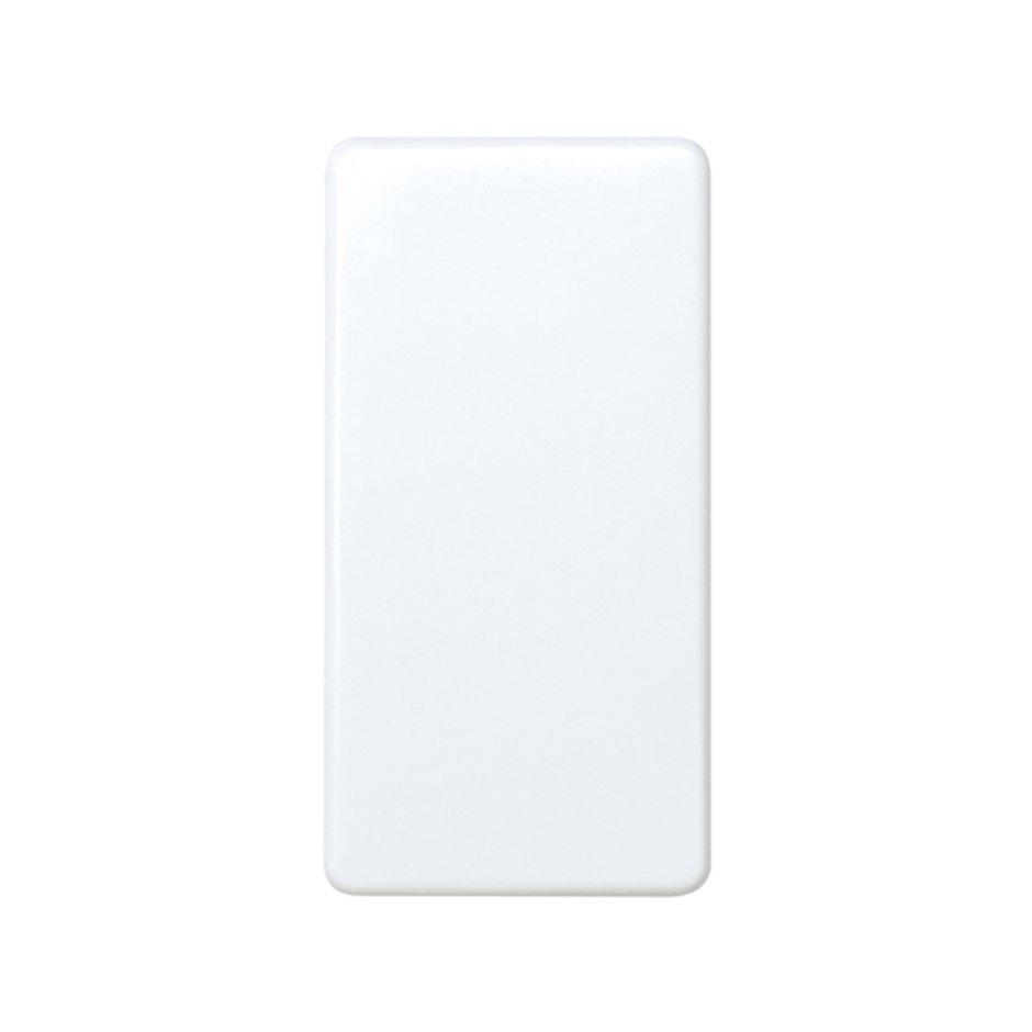 2 Way Switch 10a 250v For Half Element With Fast Terminal Mechanism 27201 64 Conmutador 10 Ax Embornamiento Rapido