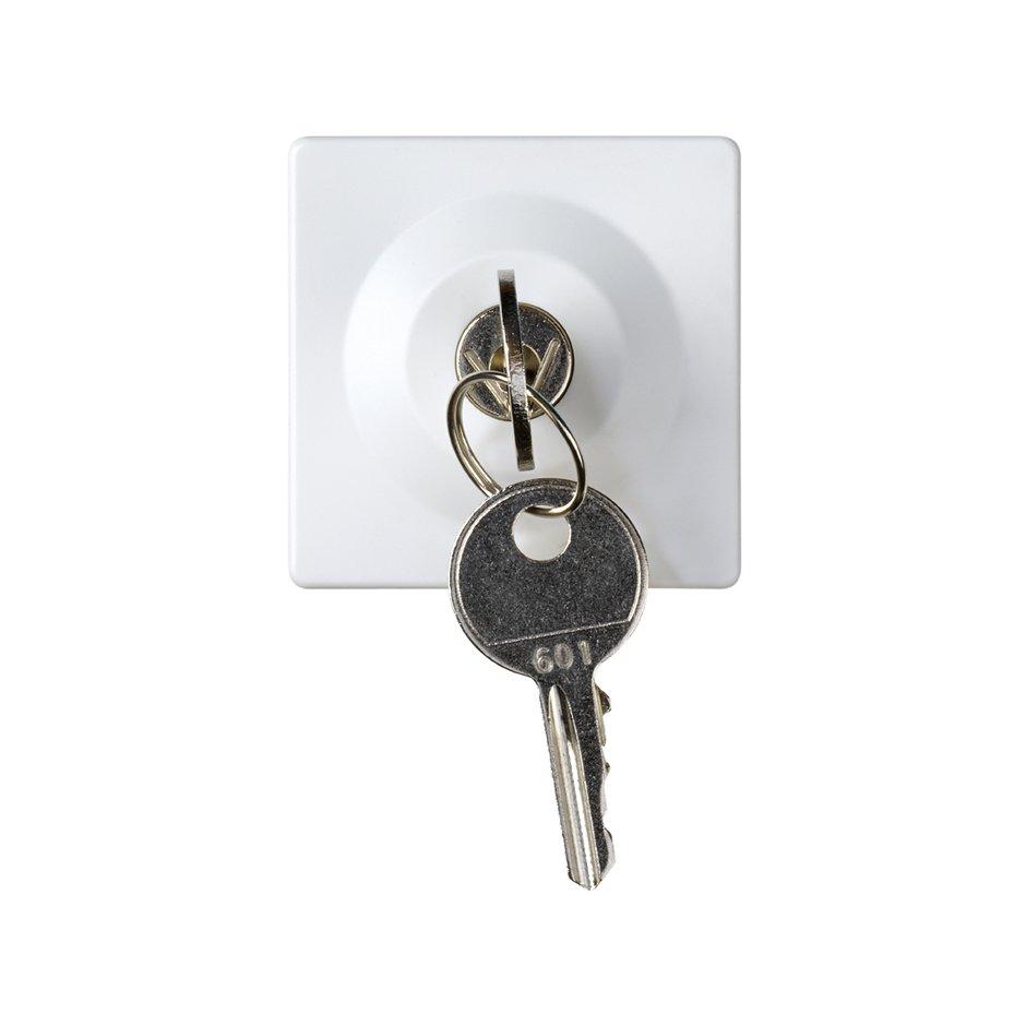 2 Way Switch With Key 25a 250v Positions Removable In Both Picture 27521 65 Conmutador Con Llave Dos Posiciones 5a